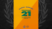 WHAT IS AGENDA 21?