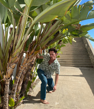 getting barreled by birds of paradise in a block printed shirt