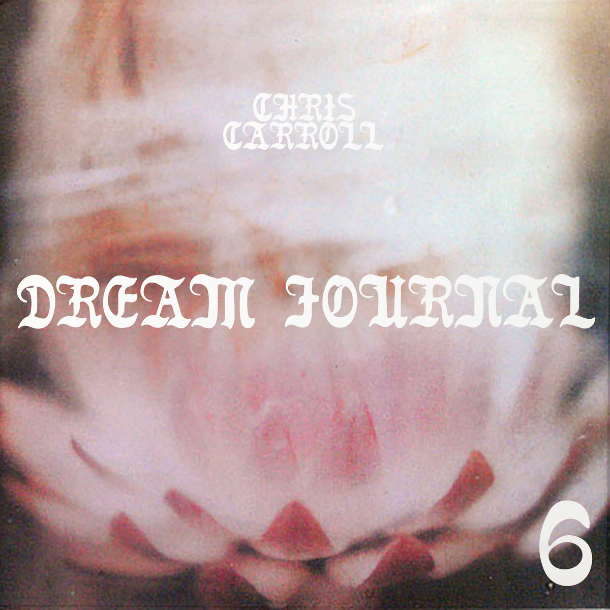 Chris Carroll-'Dream Journal, Vol. 6: Tiger Blood II' Album. 2020. Self-Released by Raindrop Sound.