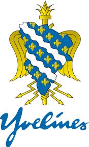 logo sdis78.png