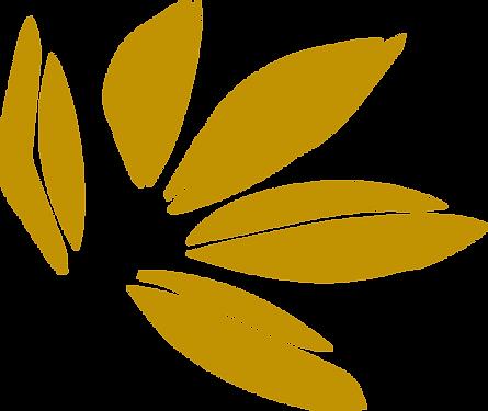 flor(b).png