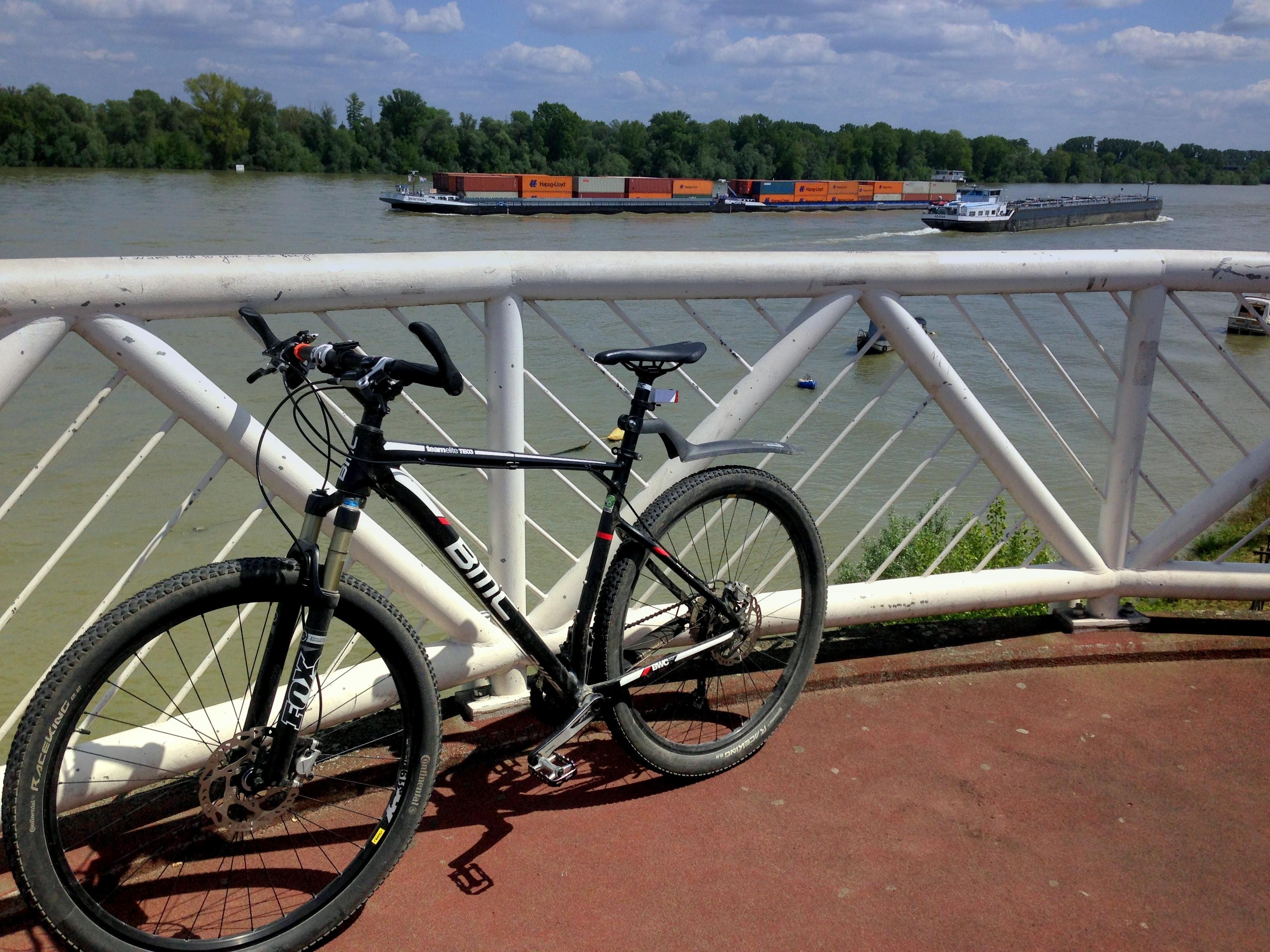 Overlooking the Rhein river