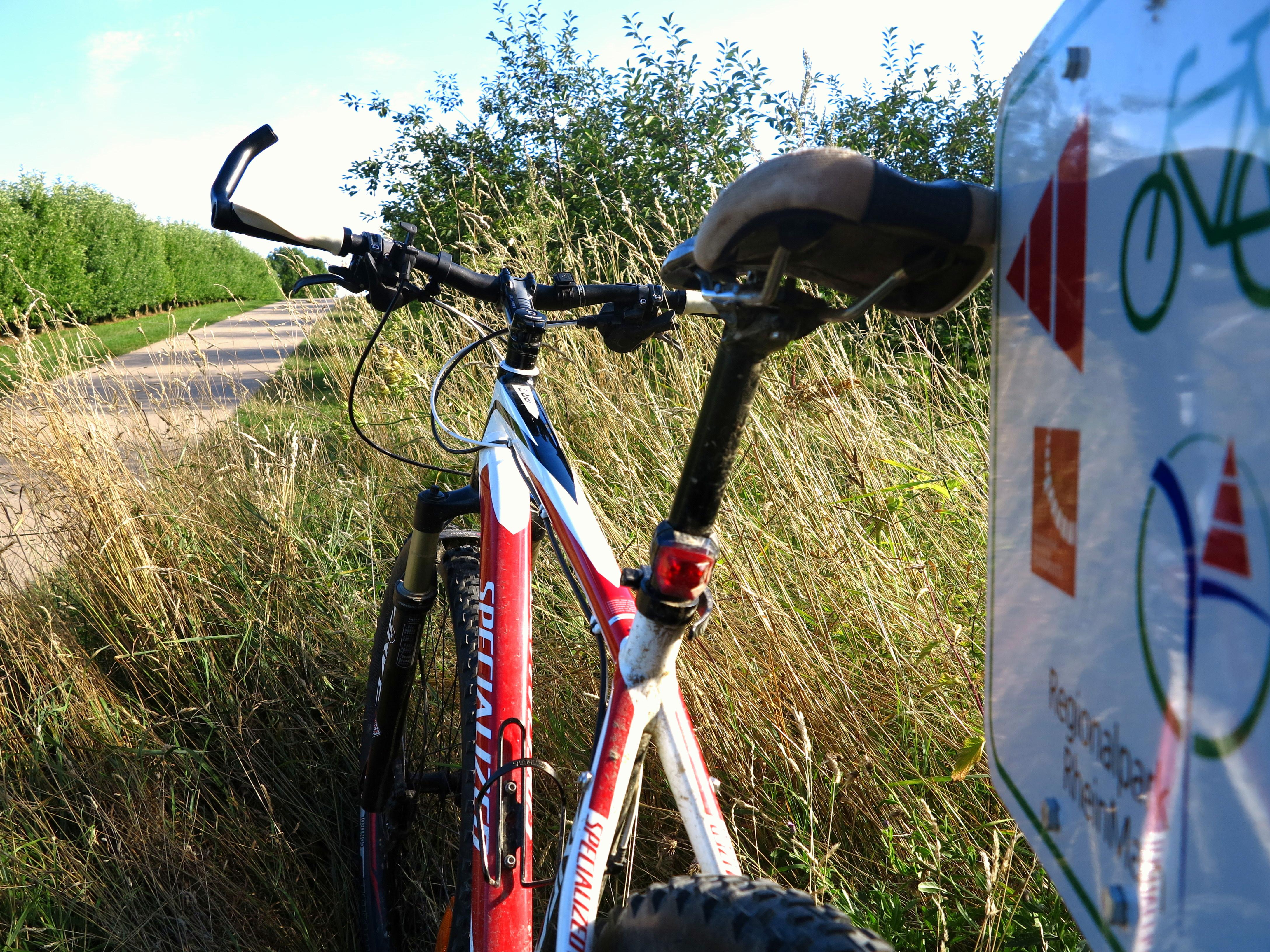 bike trail2.jpg