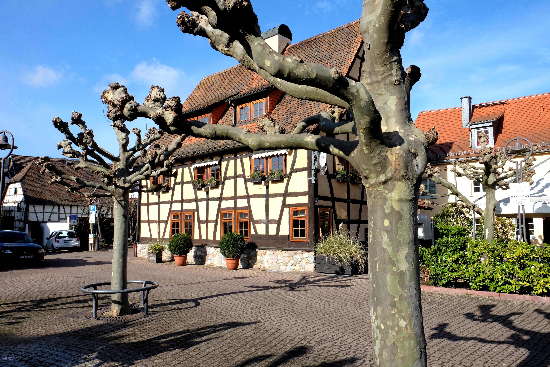 """Traditional restaurant """"Die Scheuer"""""""