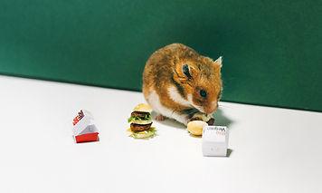 McDonalds_Hamster_Saskia_Gebauer_Header_
