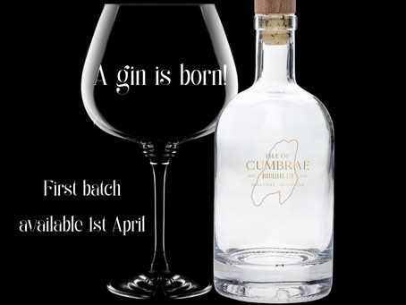 A New Gin is Born