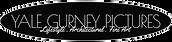 YGP Logo.PNG