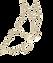 logo-mediderm.png