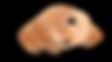 Copeau de Cèdre breton