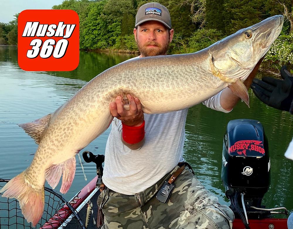 Musky Fishing Tennessee