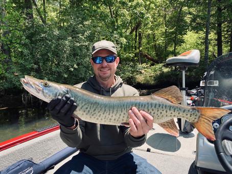 Parksville Lake Musky Fishing