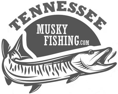 Melton Hill Muskie Fishing Report 2019