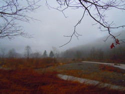 Looking S. to the Westkill Notch.jpg