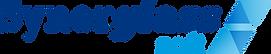 Logo_haute_définition_synerglass.png