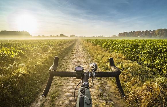 utro-tuman-doroga-pole-velosiped-dorozhn