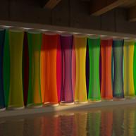 Rays of Universal Equilibrium