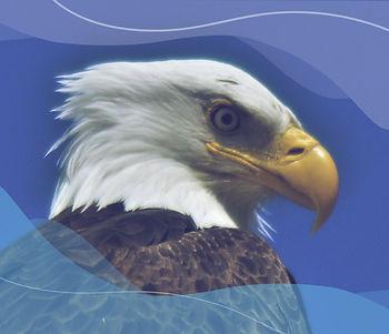 Immigration_v2.jpg