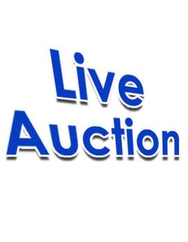 live auction image.jpg