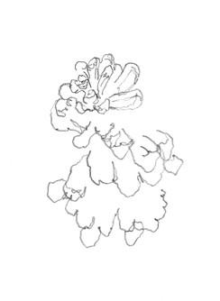 Drawings032_web.jpg