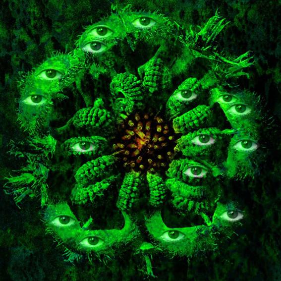 Natural_Green_1080_H 2.jpg