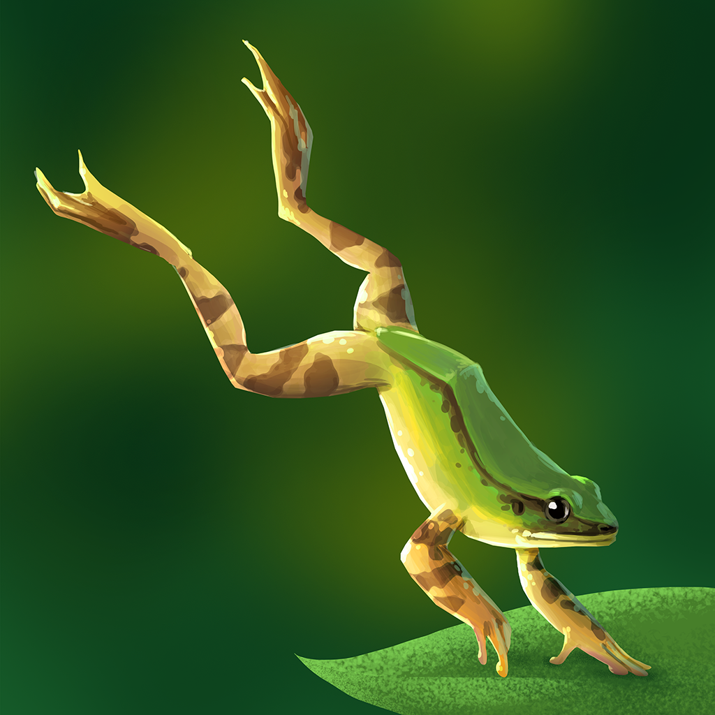 Encyclopedia_Image_HosesFrog.png