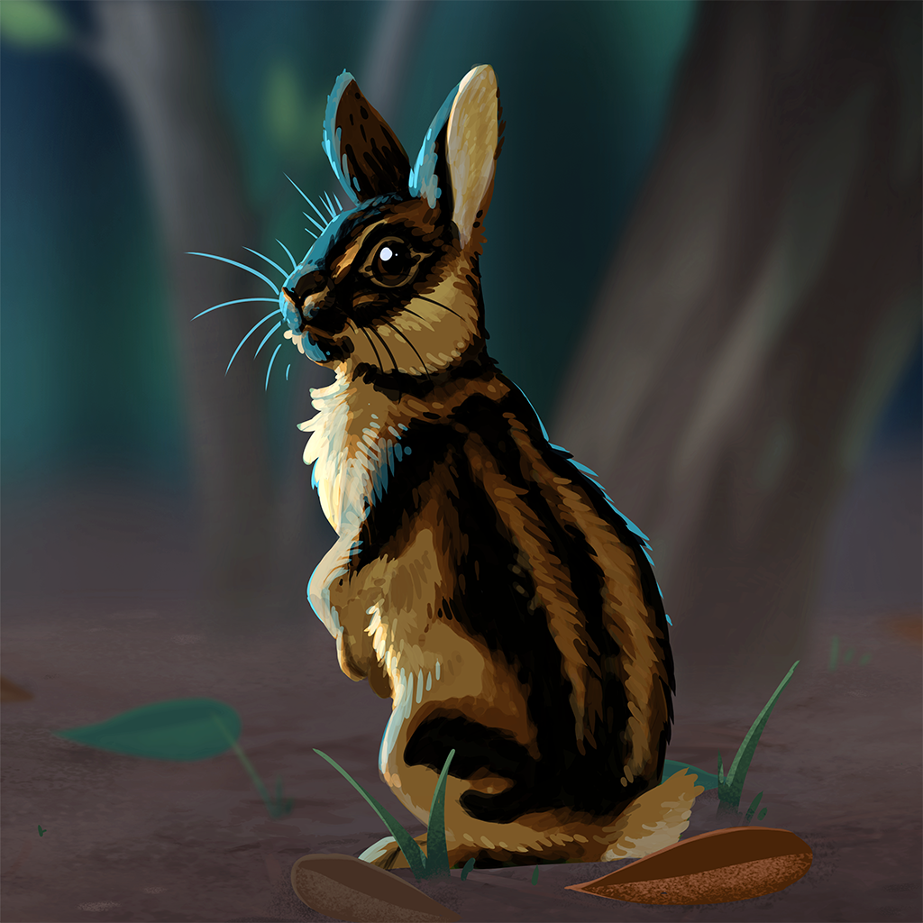 sumatran_striped_rabbit.png