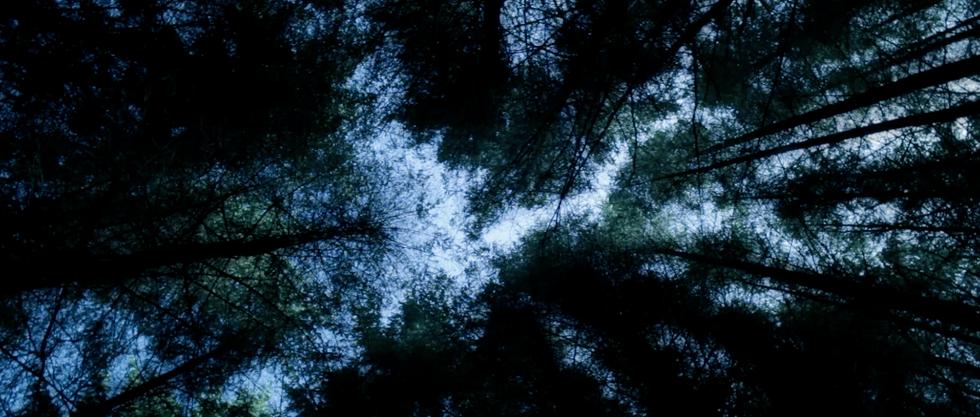 Screen Shot 2012-01-23 at 9.46.43 AM.png