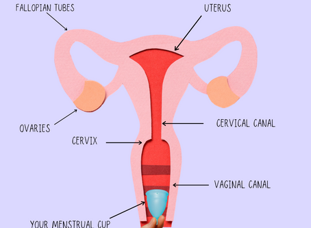 How to measure your own cervix? ~ Menstrual Cup review + How to find the right menstrual cup for you