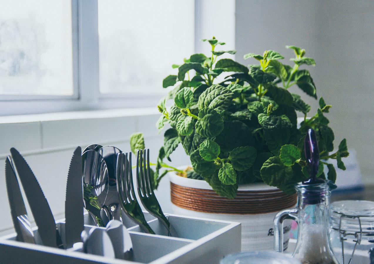 Küche_Detail_Minze.jpg