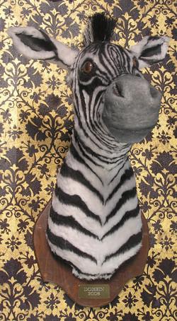 Zebra prop