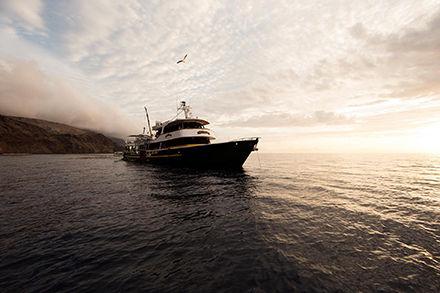 pelagic-fleet-liveaboard-solmar-v-socorr