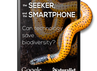 The Snake, The Seeker and the Smartphone