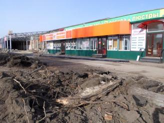Вырубка деревьев в Балашове: чиновники заявили, что в апреле высадят молодые саженцы