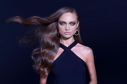 vlasy Model