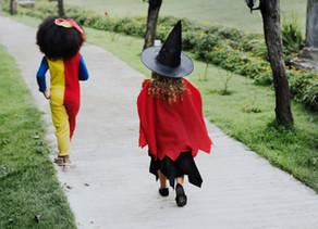 Covid friendly Pumpkin Trail launched
