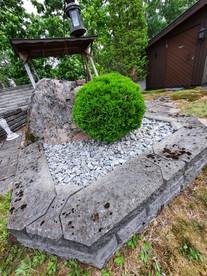 Pallotuija ja kivikate.jpg