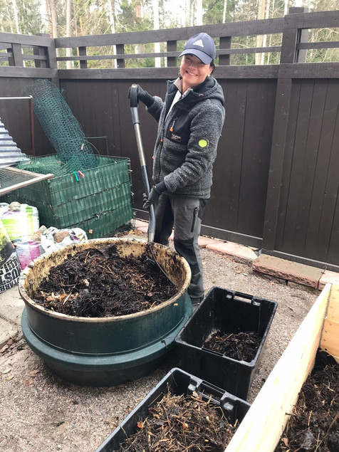Kreetta kääntää kompostia.jpg