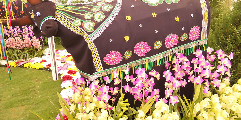 27a AFLORD Festa das Flores