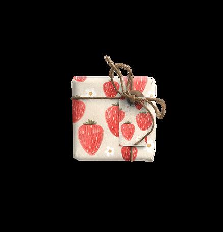 Strawberry shortcake N3_edited.png