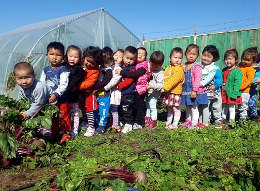 Хүүхдэд зориулсан экологийн мэдлэг олох сургалтууд зохион байгуулагдлаа