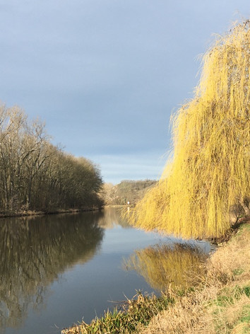 Blick direkt am Wasser gegenüber der Lebensbalance