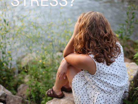 Raus aus der Stressfalle – Vom Opfer bei verbalen Angriffen zum Flow