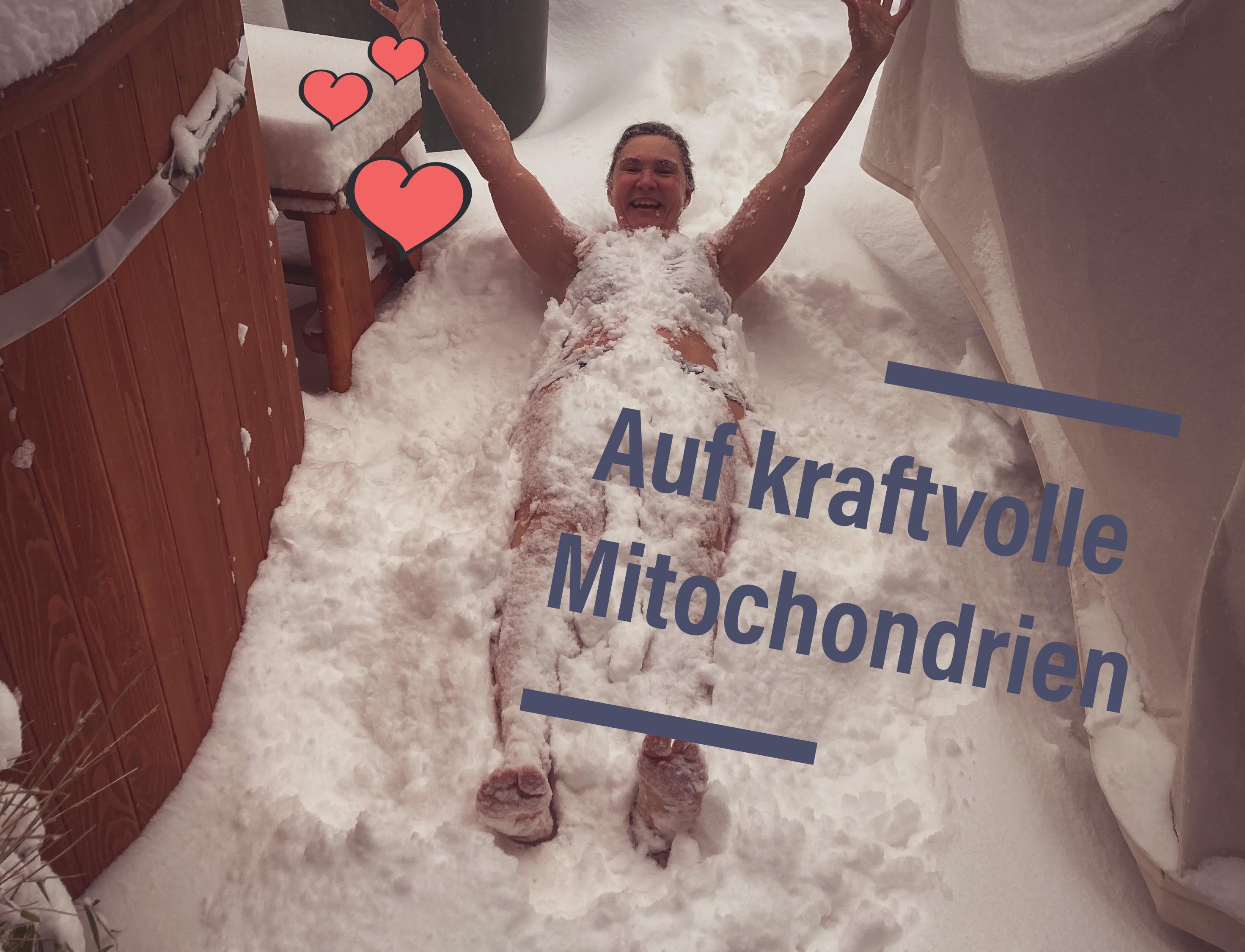 Mitochondrien Training