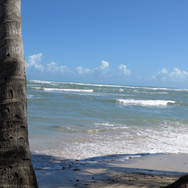 Easy walk to lovely beach