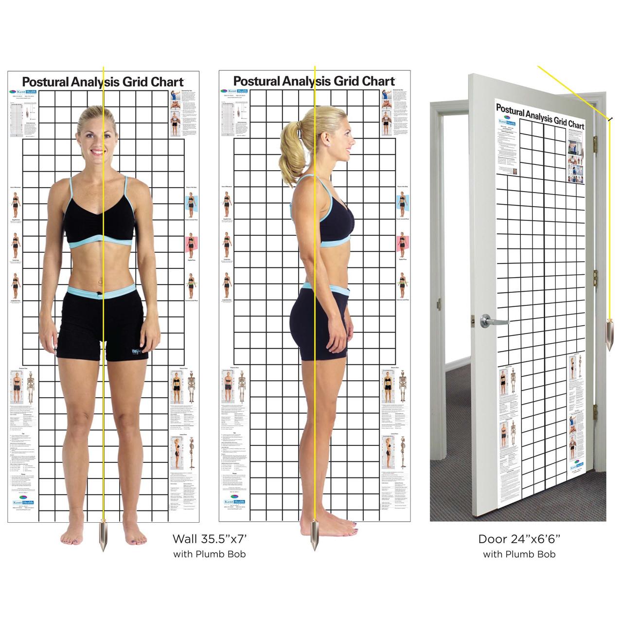 Posture-Chart-Wall-and-Door-Sizes-with-P