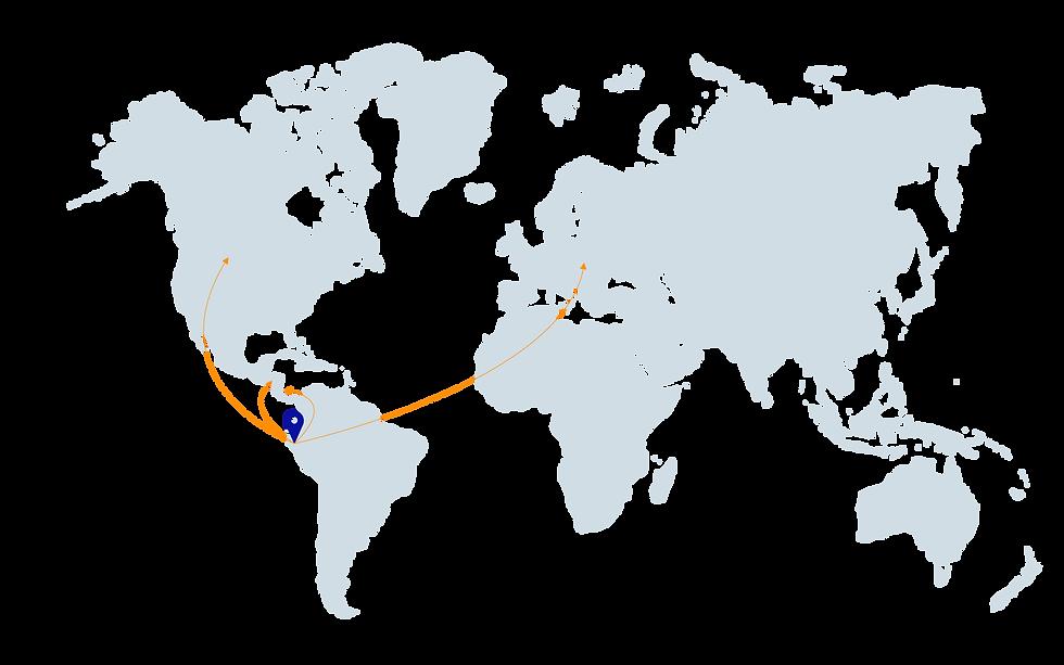 Azende exportación