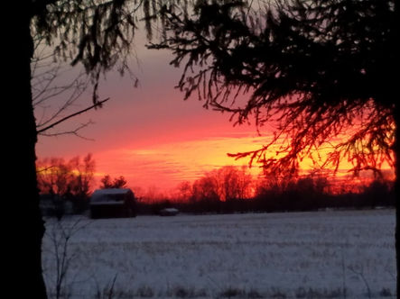 winter sunset 3.jpg