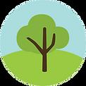 Tree Transparent.jpg.png