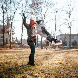 sesja-biznes-szkolenie-psow-kapitan-pies