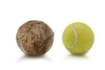 Details zu  Firedog Kaninchen-Tennisball Fellball Tennisball Dummyball mit Fell